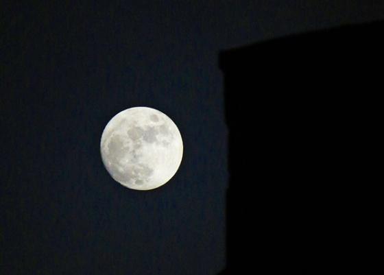 brighton moon