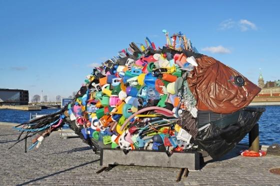 scrap fish 1
