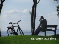 sl week 31 - featured