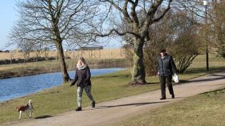 sunday walkers