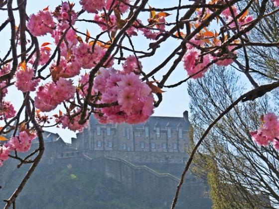 castle in springtime