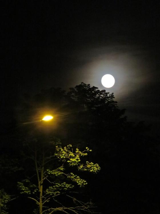 sopot full moon
