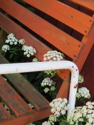 flowery bench