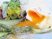 marlin - perfect egg