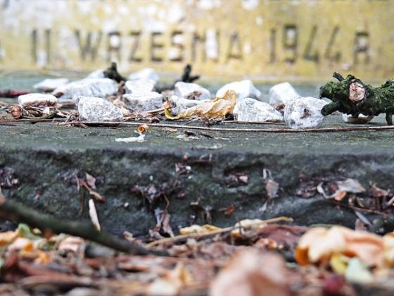 cemetery 11