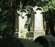 jewish cemetery 11