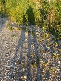 our shadowa