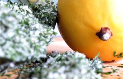 dill-lemon