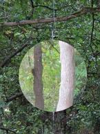 rotating-mirrow
