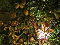 christmas-in-marrakesh