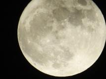 no-super-moon