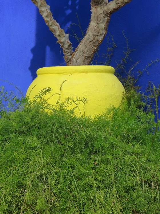 yellow-pot