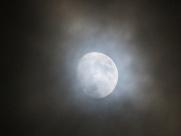 belfast-moon