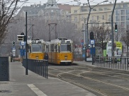 love trams
