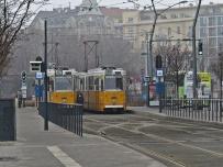 love trams