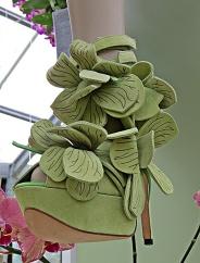 orchid shoe 1