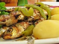 aveiro - my lunch 3