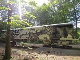 train in the sunshine