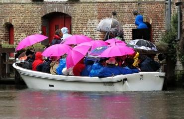 brave tourists