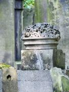 grave 7
