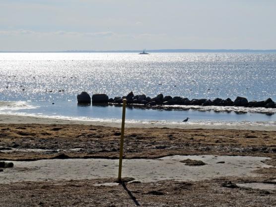 skimmrande hav