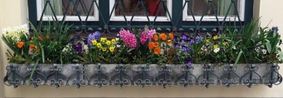 springtime window box