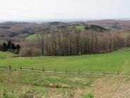 stunning farm view