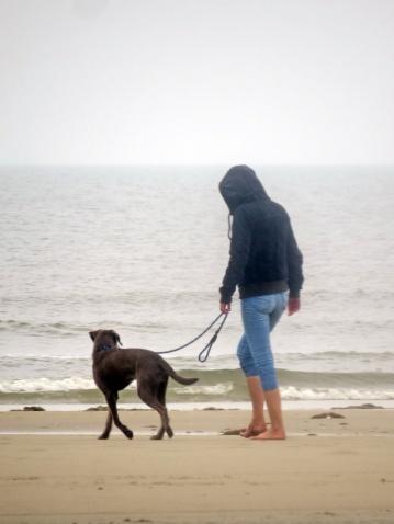doggy walk