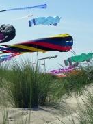dunes and kites