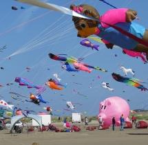 kite 12