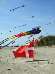 kite 13