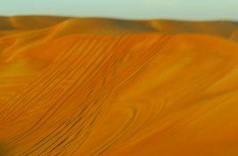 sand 7