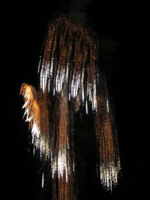 firework 6