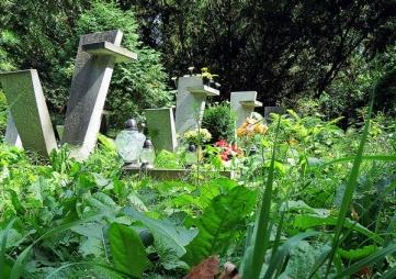 grave yard 15