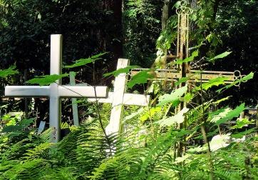 grave yard 19