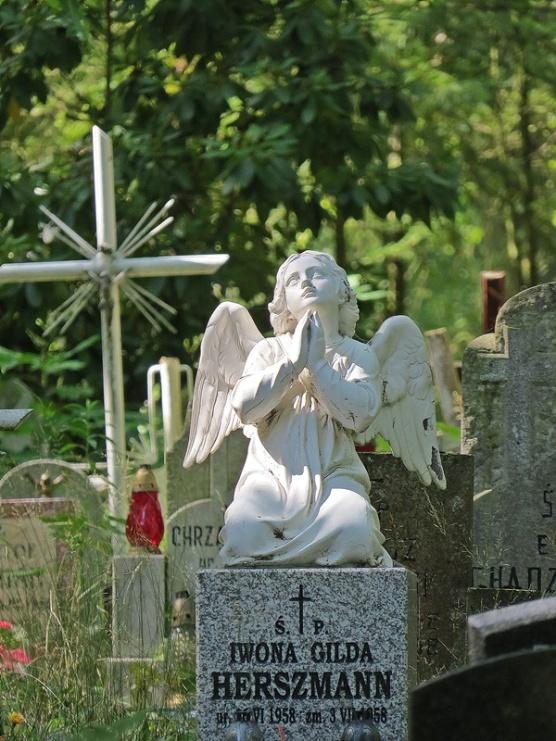 grave yard 4