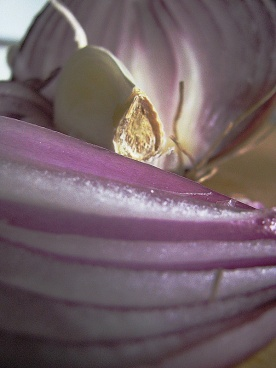 garlic & red onion